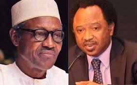 Your Supporters are only Loyal To Power And Not to You – Shehu Sani To Buhari