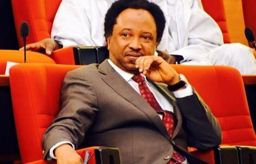 APC NWC Recalls Senator Shehu Sani From Suspension